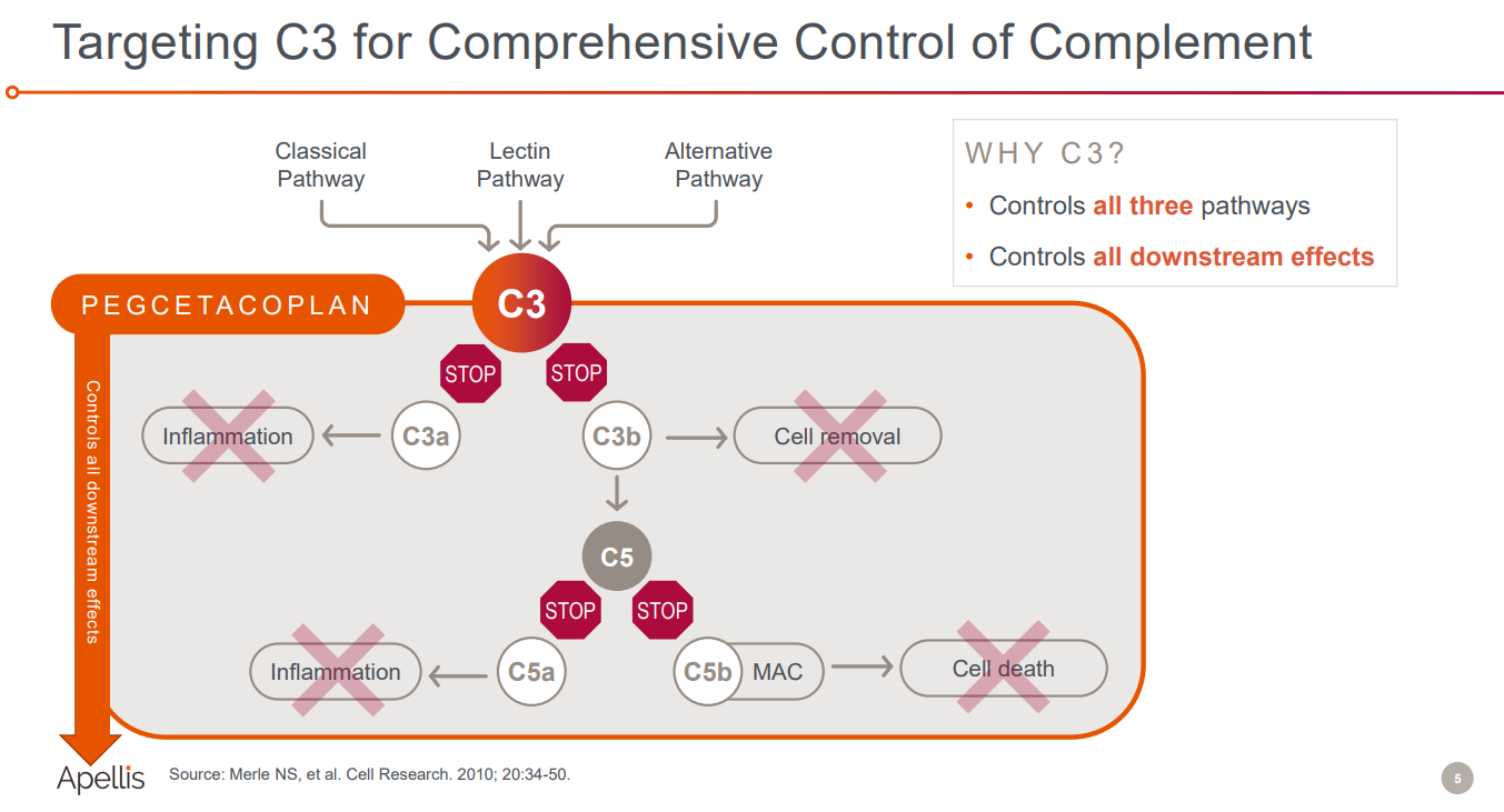 Apellis takes the complement fight to Astrazeneca | Evaluate