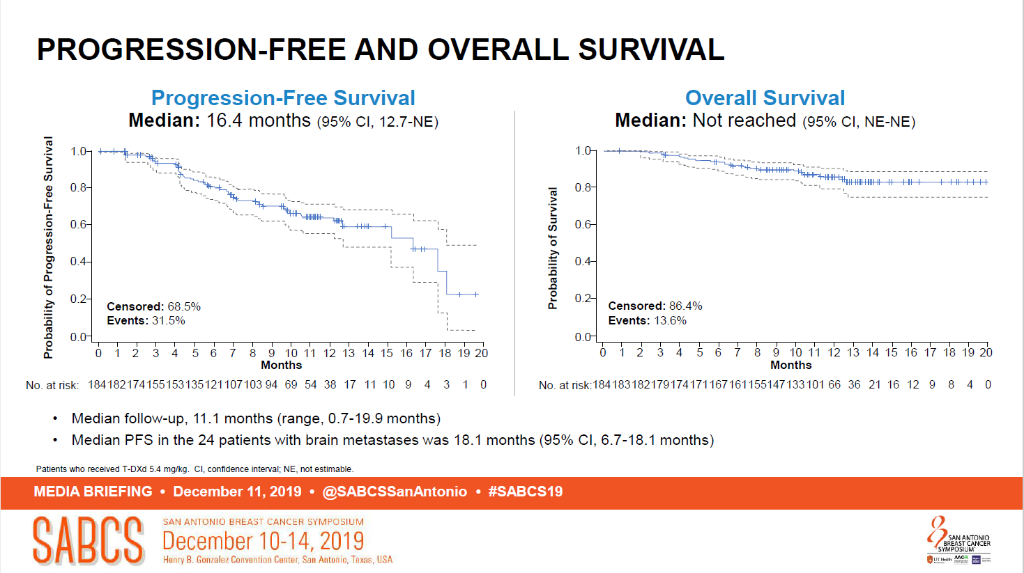 Survival curves with trastuzumab deruxtecan