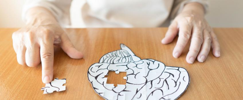 Old lady hands brain puzzle Alzheimer