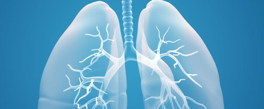 Illustration of light blue lungs against dark blue background