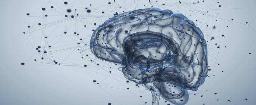 Illustration of translucent blue brain, surrounded by dots, against grey background
