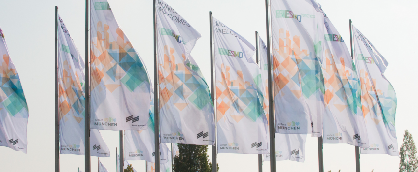 ESMO18 flags