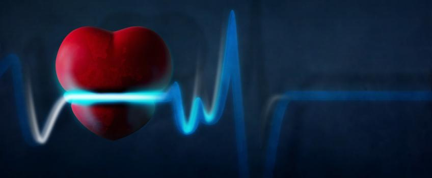 Heart with ECG trace against dark background