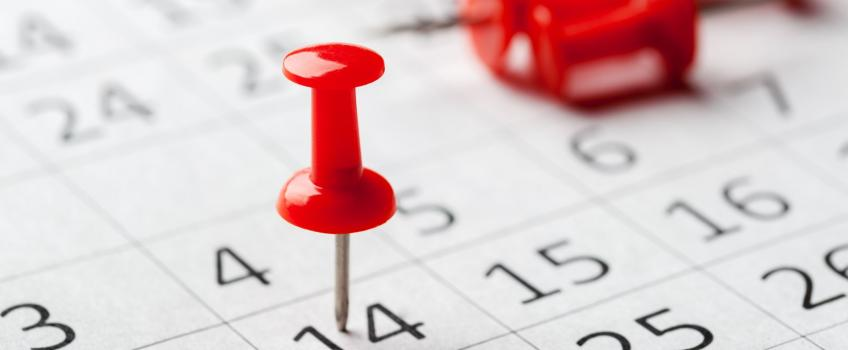 Calendar pin 14th