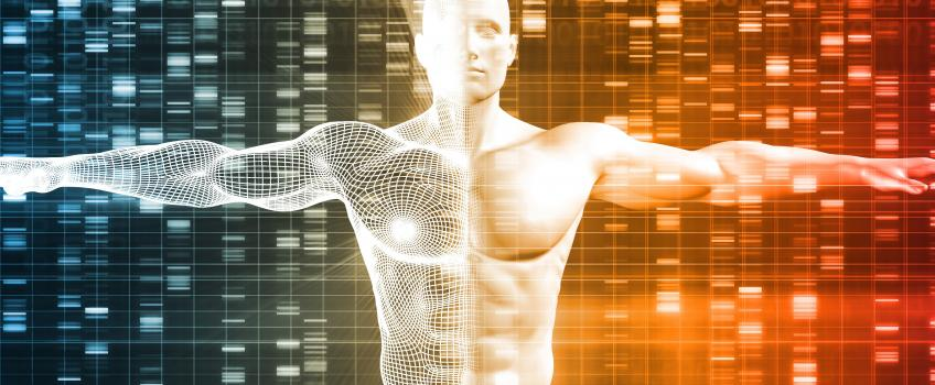 Human torso on background of genetic map